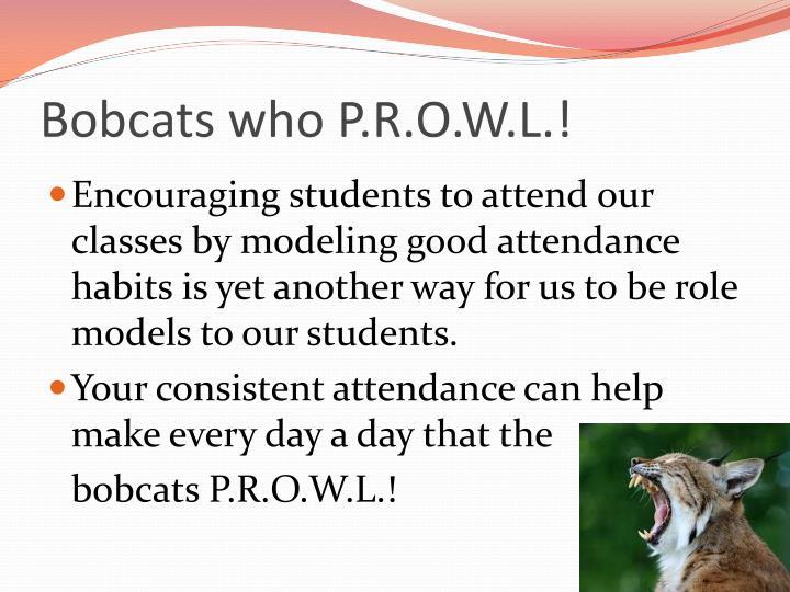 Bobcats who P.R.O.W.L.!