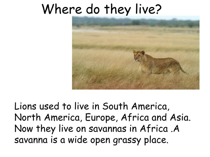 Where do they live?