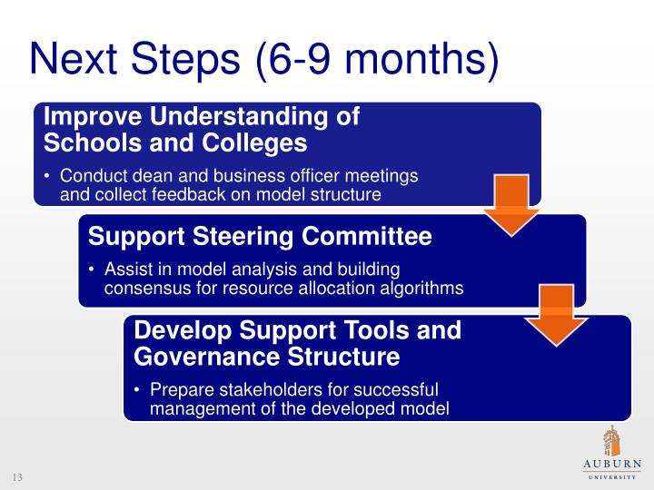 Next Steps (6-9 months)
