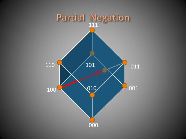 Partial  Negation