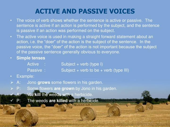 active and passive voices n.