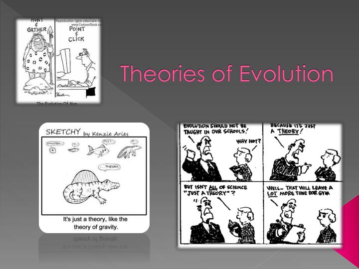 an analysis of the theory of evolution Origins and biochemical evidence by studying the basic biochemistry shared by many organisms, we can begin to piece together how biochemical systems evolved near the root of the tree of life.