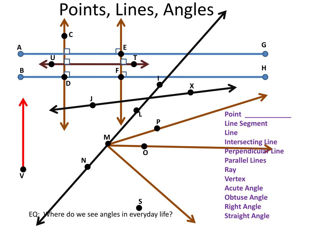 PPT - Angles and Shapes Review PowerPoint Presentation - ID