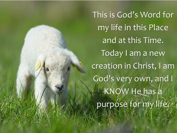 This is God's Word for my