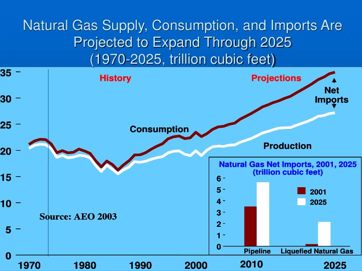 Natural Gas Supply, Consumption, and Imports Are Projected to Expand Through 2025