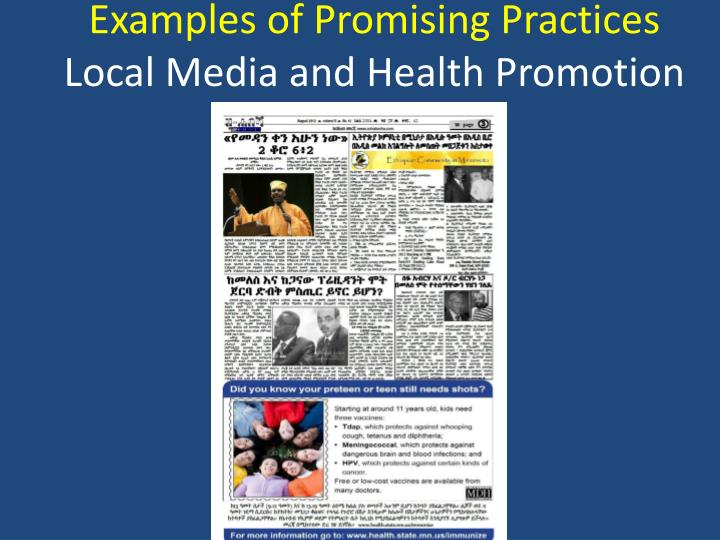 Examples of Promising Practices