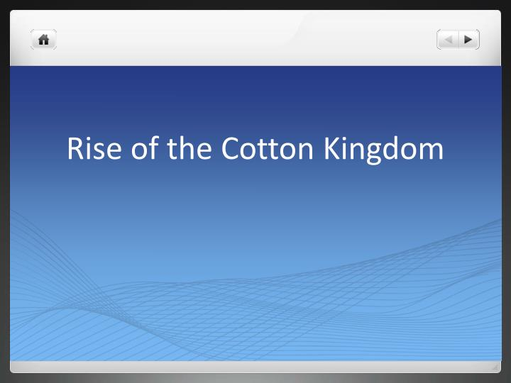 rise of the cotton kingdom n.