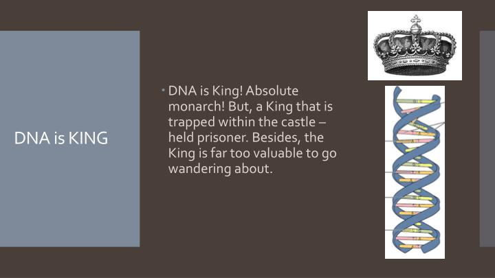 Dna is king
