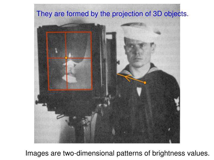 They are formed by the projection of 3D objects.