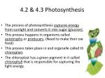4 2 4 3 photosynthesis