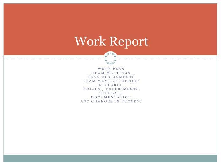 Work report