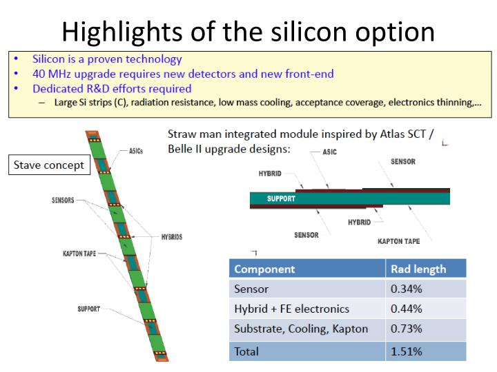 Highlights of the silicon option