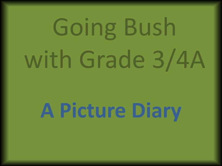 going bush with grade 3 4a n.