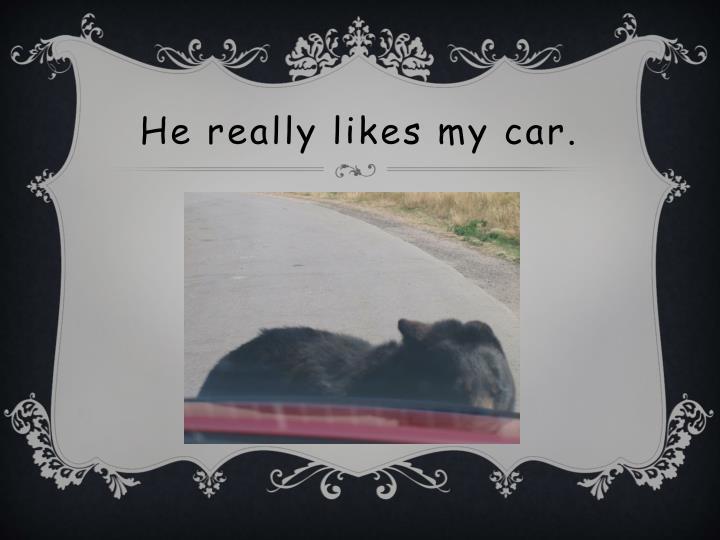 He really likes my car.