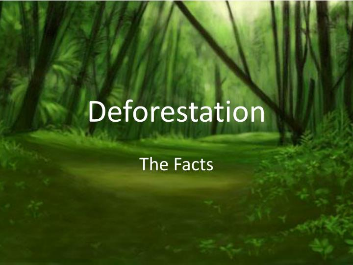environmental science deforestation essay