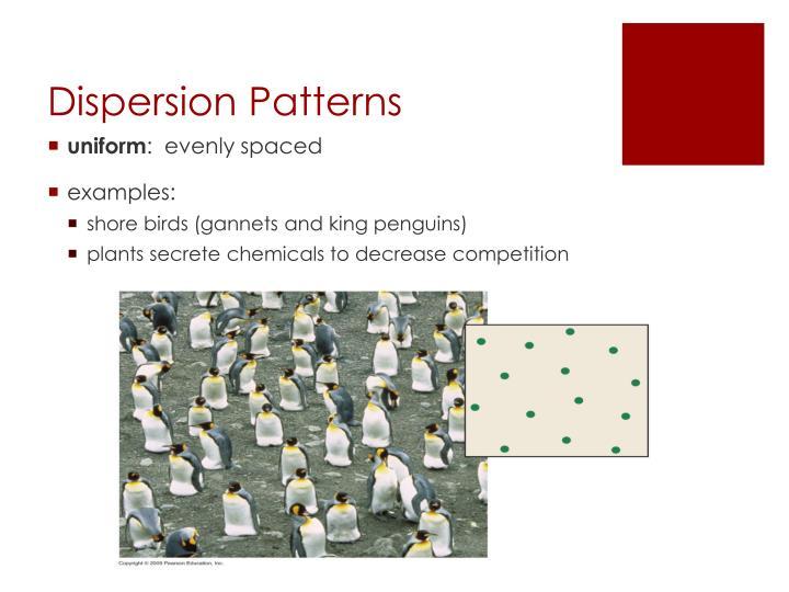 Dispersion Patterns