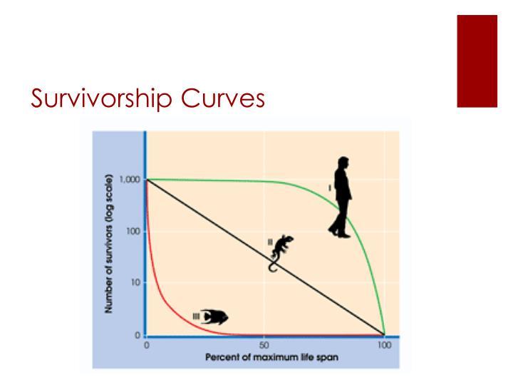 Survivorship Curves