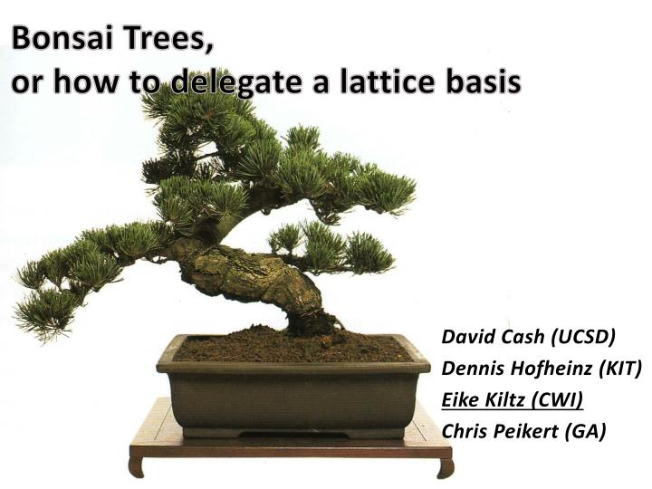bonsai trees or how to delegate a lattice basis n.