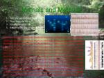 matrials and methods