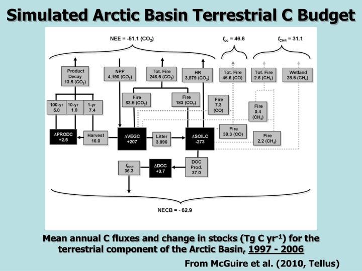 Simulated Arctic Basin Terrestrial C