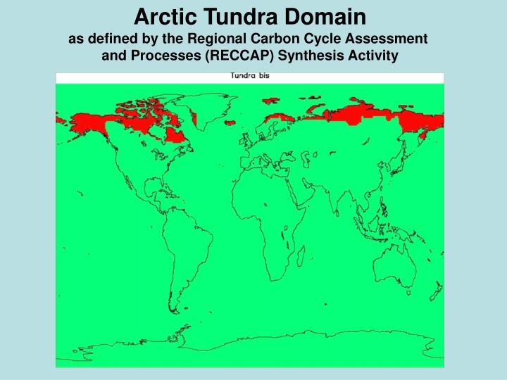 Arctic Tundra Domain