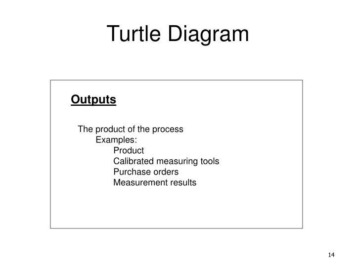 Ehs Turtle Diagram Trusted Schematics Diagram
