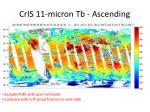 cris 11 micron tb ascending