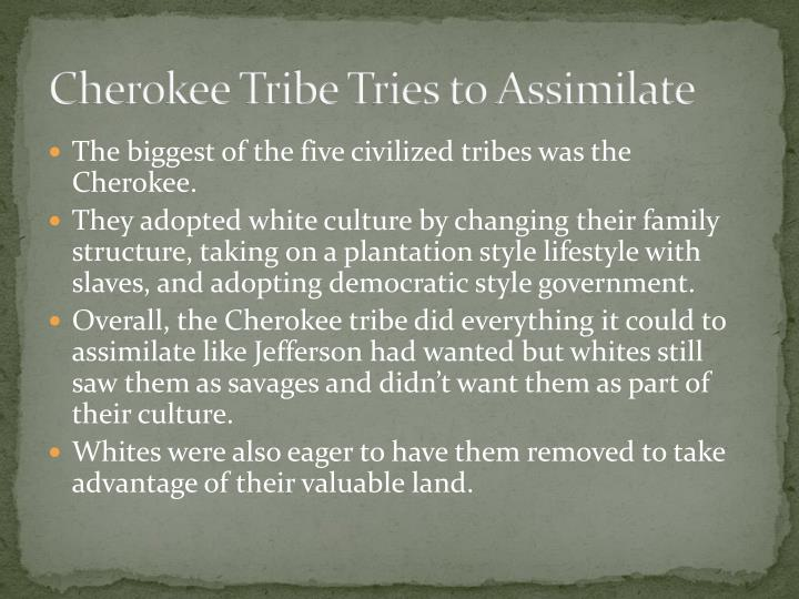 Cherokee Tribe Tries to Assimilate