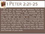 1 peter 2 21 25