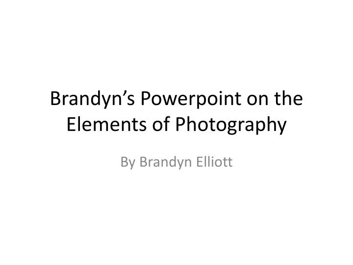 brandyn s powerpoint on the elements of photography n.
