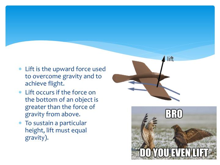 Lift is the upward force used to overcome gravity and to achieve flight.