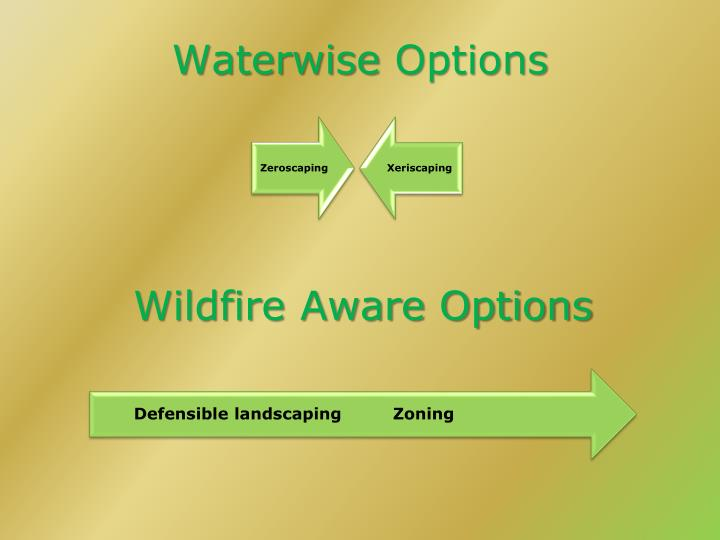 Waterwise options
