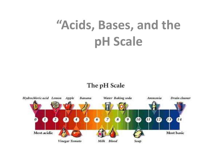 acids bases and the ph scale n.