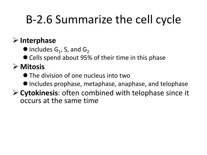 B-2.6 Summarize the cell cycle