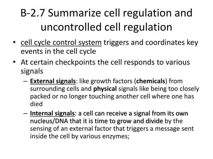 B-2.7 Summarize cell regulation and uncontrolled cell regulation