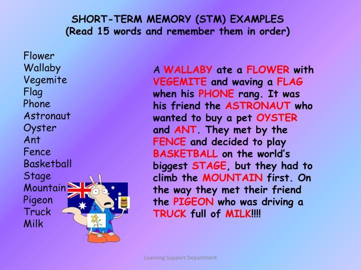 SHORT-TERM MEMORY (STM) EXAMPLES