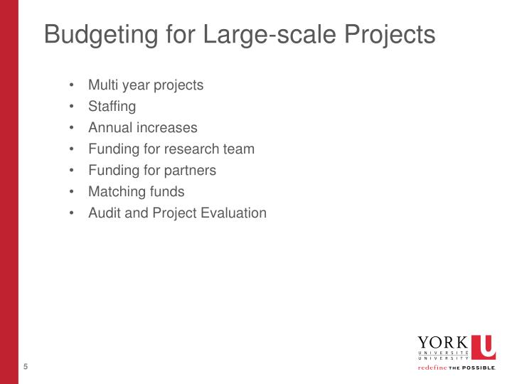 Budgeting for Large-scale Projects