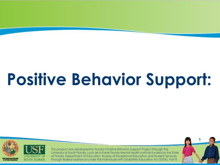 positive behavior support n.