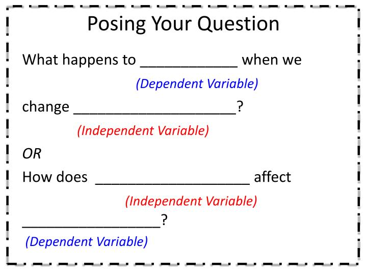 Posing Your Question