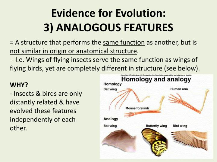 what is the evidence for evolution The evidence for evolution darwin and other 19th-century biologists found compelling evidence for biological evolution in the comparative study of living organisms.