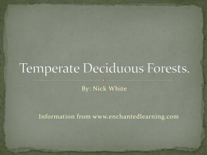 temperate deciduous forests n.