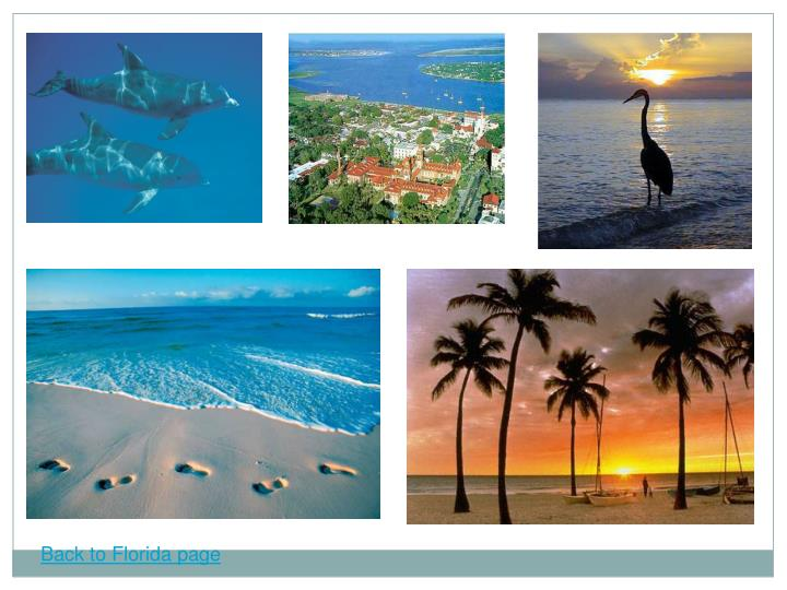 Back to Florida page