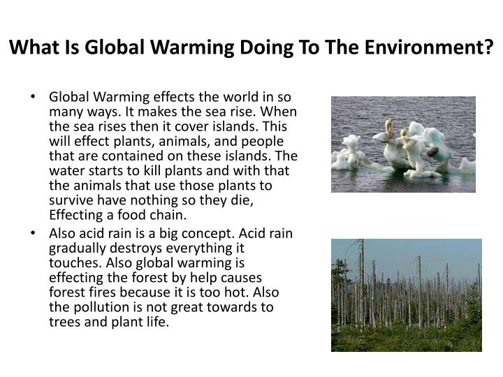an examination of the environmental effects of global warming Essay on causes and effects of global warming global warming as being a huge environmental issue, it has become very necessary to increase awareness about it among common public all over the world.