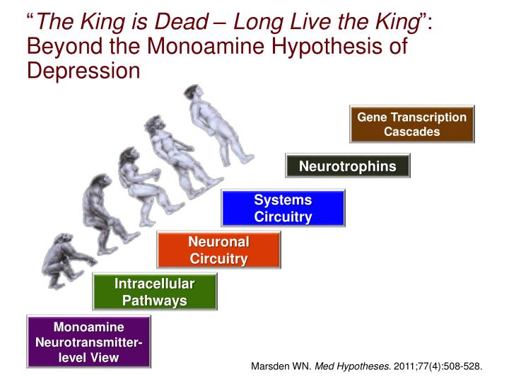 The king is dead long live the king beyond the monoamine hypothesis of depression