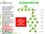 contoh roll up