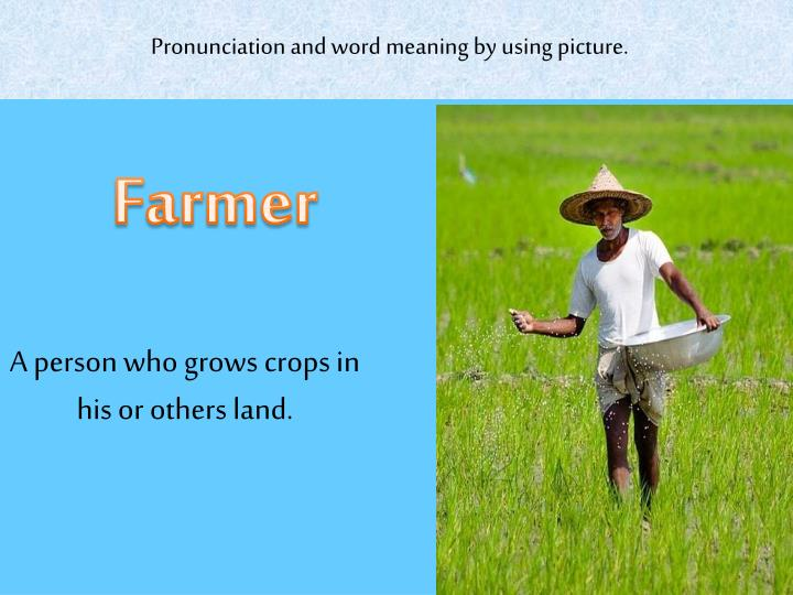 Pronunciation and word meaning by using picture.