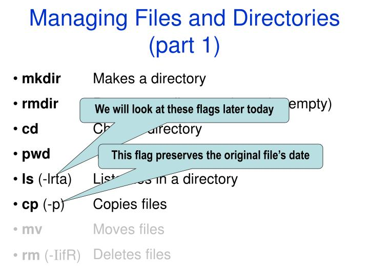 managing files and directories part 1 n.