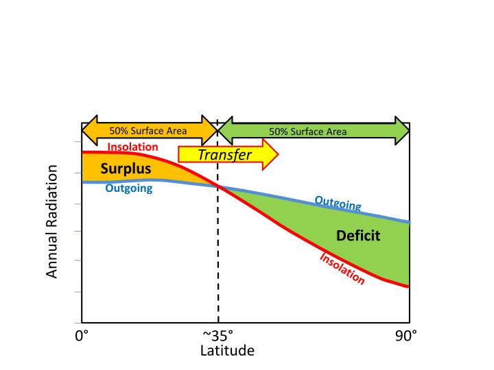50% Surface Area
