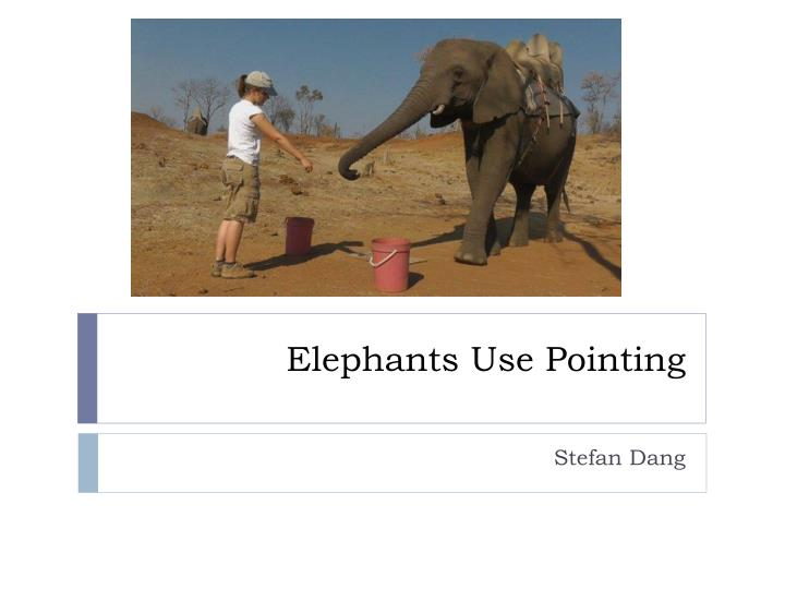 Elephants use pointing