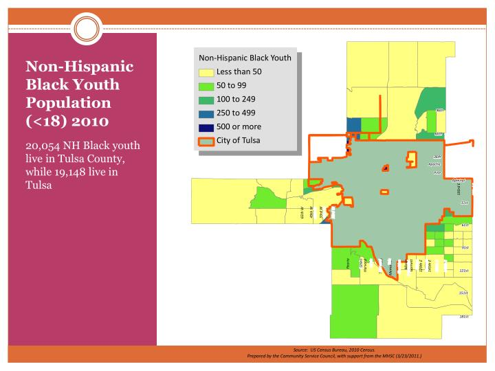 Non-Hispanic Black Youth Population (<18) 2010